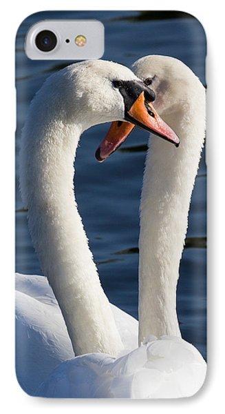 Courting Swans IPhone Case by David Pyatt