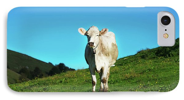 Cow And Mountains IPhone Case