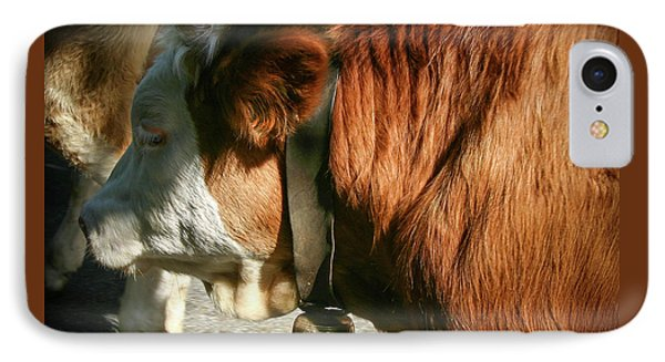 Cow Beautiful - IPhone Case