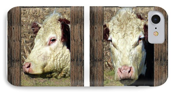Cow Framed IPhone Case by Tina M Wenger