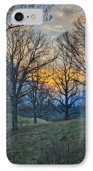 Cow Pasture At Dusk IPhone Case