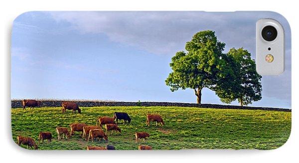 Cow Pasture IPhone Case