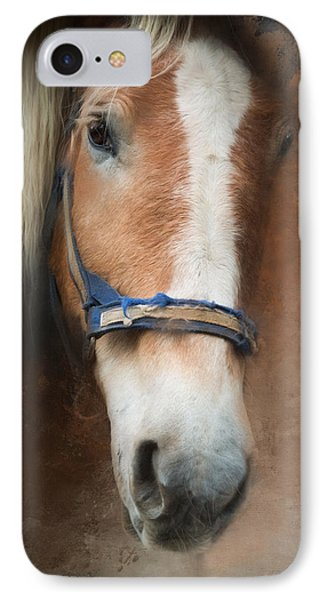 IPhone Case featuring the photograph Cow Pony by Robin-Lee Vieira