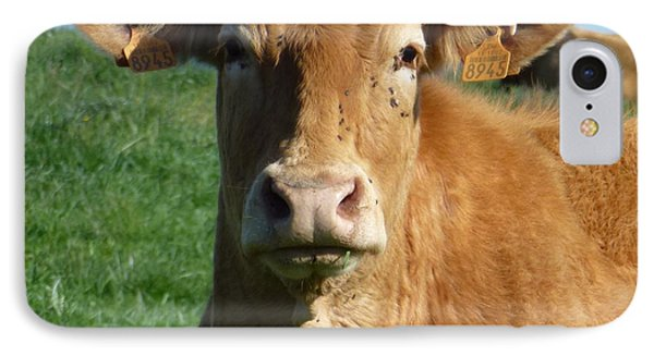 Cow Portrait IPhone Case by Jean Bernard Roussilhe