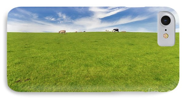Cows In A Pasture IPhone Case by Adrian Evans