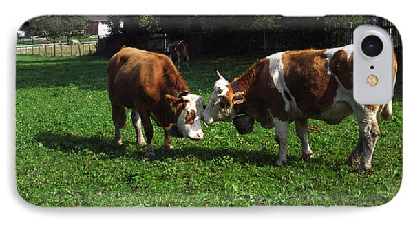 Cows Nuzzling IPhone Case by Sally Weigand