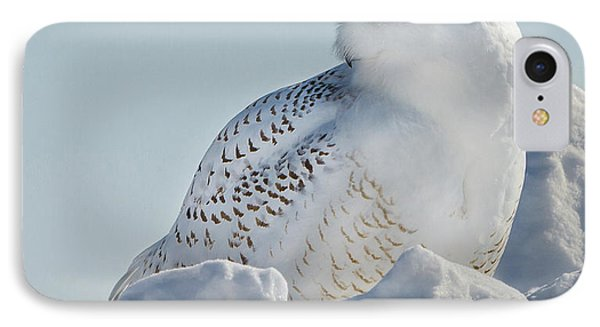 IPhone Case featuring the photograph Coy Snowy Owl by Rikk Flohr