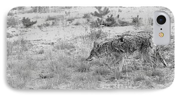 Coyote Blending In Phone Case by Christine Till