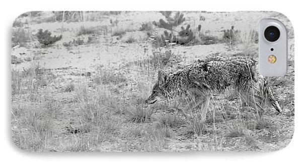 Coyote Blending In IPhone Case