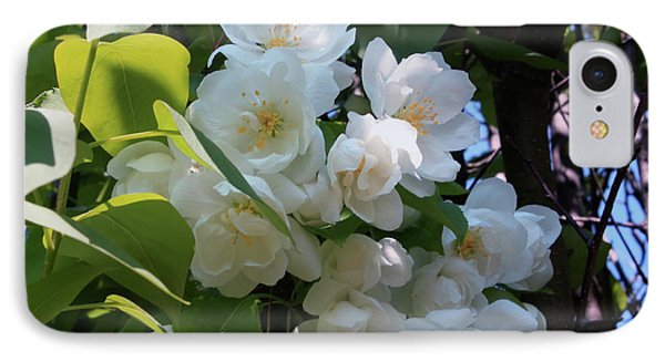 Crab Apple Blossoms 3 Phone Case by Marjorie Imbeau