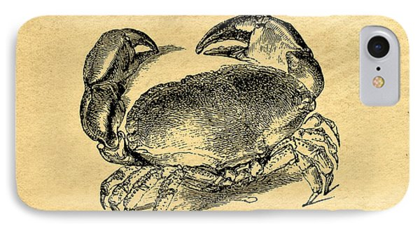 Crab Vintage IPhone Case by Edward Fielding
