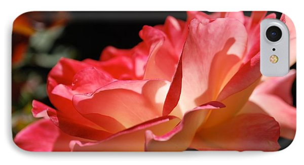 Cracklin' Rose IPhone Case