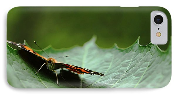 IPhone Case featuring the photograph Cradled Painted Lady by Debbie Oppermann