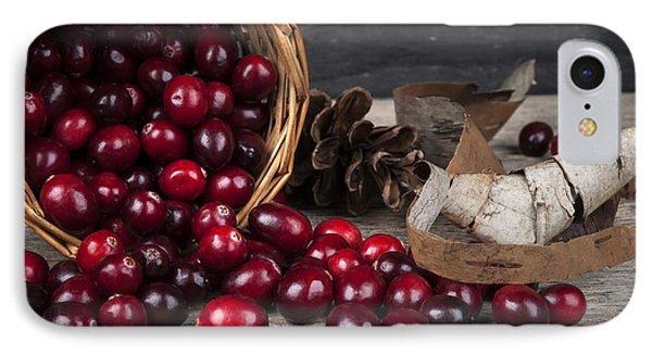 Cranberries Still Life IPhone Case by Elena Elisseeva
