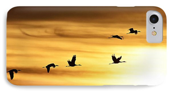 IPhone Case featuring the photograph Cranes At Sunrise 2 by Larry Ricker
