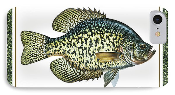 Crappie Print Phone Case by JQ Licensing