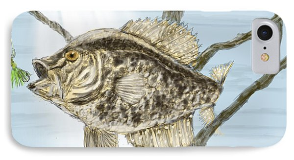 Crappie Time - 2 IPhone Case by Barry Jones