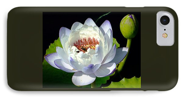 IPhone Case featuring the photograph Creation by Brenda Pressnall