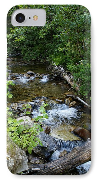 IPhone Case featuring the photograph Creek On Mt. Spokane 1 by Ben Upham III