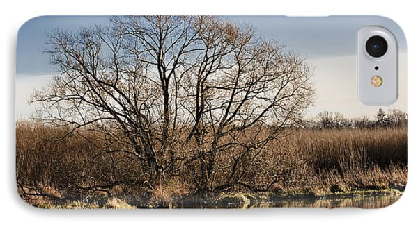 Creek Tree IPhone Case by Leif Sohlman