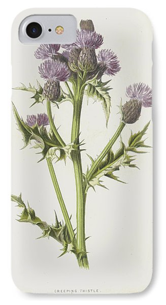 Creeping Thistle IPhone Case