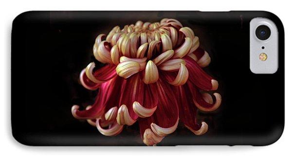 Crimson Tide IPhone Case by Jessica Jenney