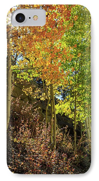 IPhone 7 Case featuring the photograph Crisp by David Chandler