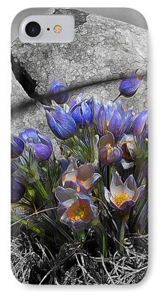 Crocus - Between A Rock And You IPhone Case by Stuart Turnbull