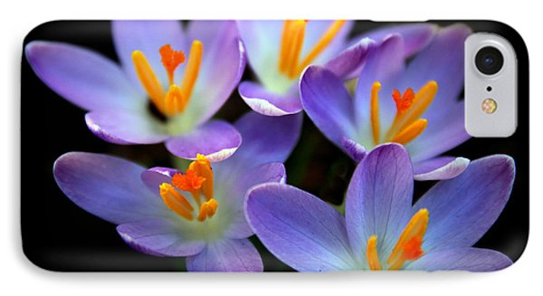 IPhone 7 Case featuring the photograph Crocus Aglow by Jessica Jenney