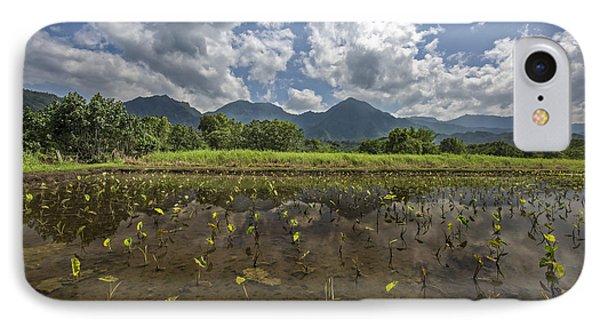 Crops On Kauai IPhone Case by Jon Glaser