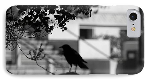 Crow Cameo IPhone Case by Kandy Hurley