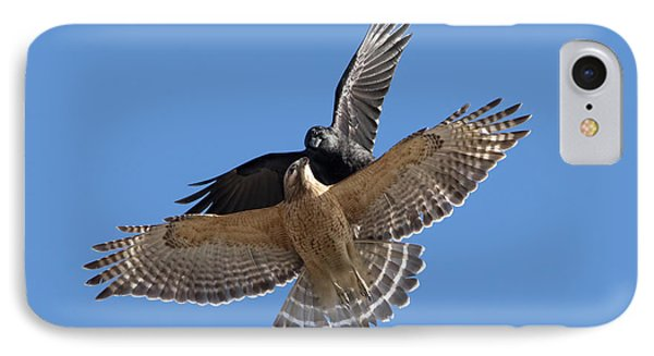 IPhone Case featuring the photograph Crow Vs Hawk by Mircea Costina Photography