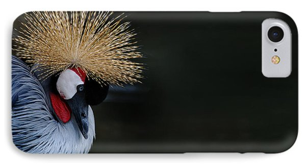 Crowned Crane Phone Case by Skip Willits