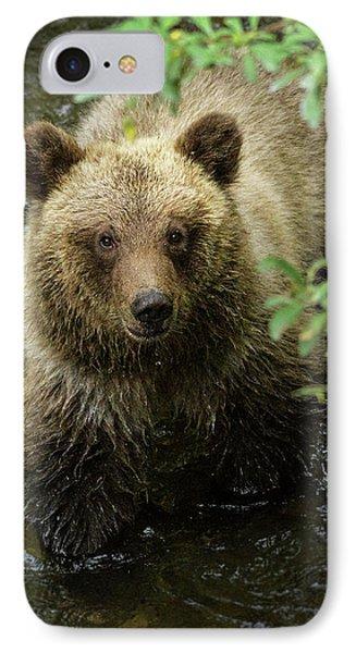 Cubby IPhone Case