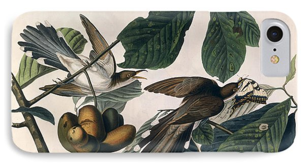Cuckoo iPhone 7 Case - Cuckoo by John James Audubon