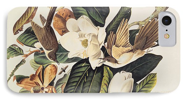 Cuckoo On Magnolia Grandiflora Phone Case by John James Audubon