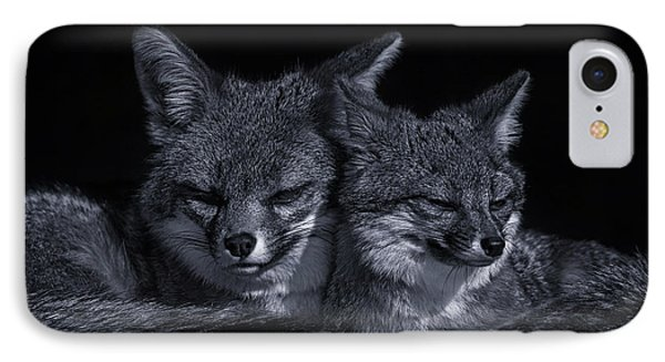 Cuddle Buddies  IPhone Case by Brian Cross