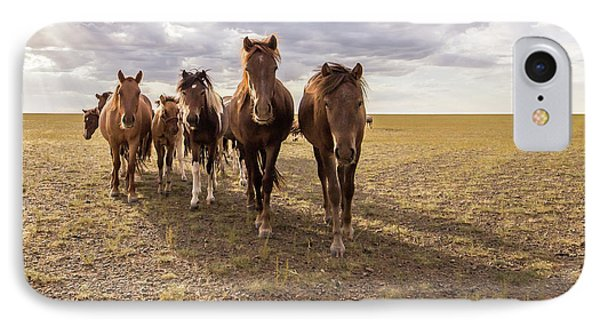 IPhone Case featuring the photograph Curious Horses by Hitendra SINKAR