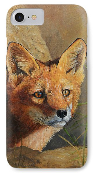 Curious - Red Fox Kit IPhone Case