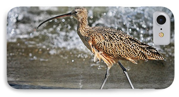 Curlew And Tides IPhone Case by William Lee