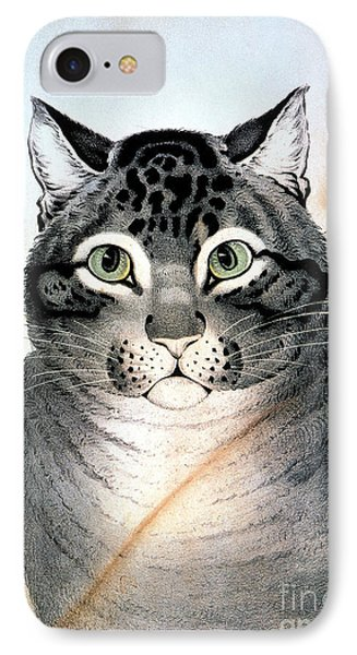Currier And Ives Cat Phone Case by Granger