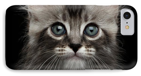 Cat iPhone 7 Case - Cute American Curl Kitten With Twisted Ears Isolated Black Background by Sergey Taran