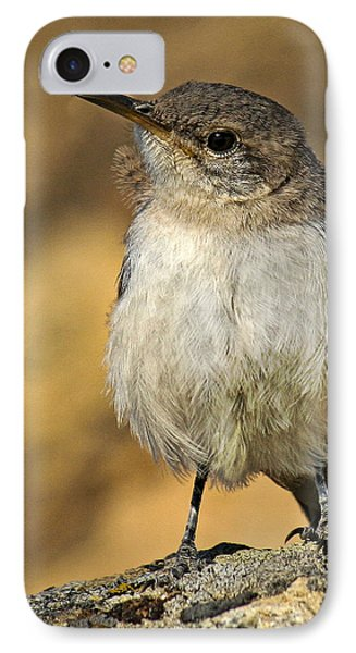 Cute Baby Bird By Jean Noren IPhone Case by Jean Noren