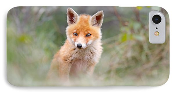 Cute Baby Fox IPhone Case by Roeselien Raimond