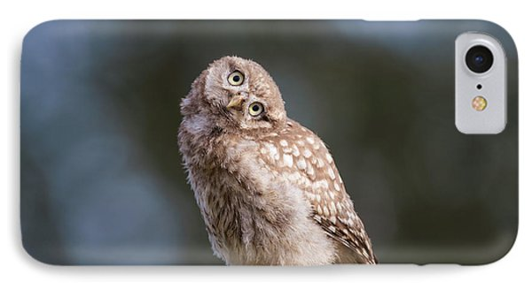 Cute, Moi? - Baby Little Owl IPhone Case by Roeselien Raimond