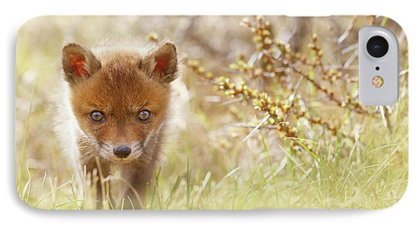 Cute Overload - Baby Fox Kit IPhone Case by Roeselien Raimond