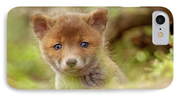 Cute Overload Series - Curious Baby Fox IPhone Case by Roeselien Raimond