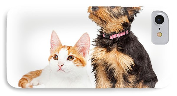 Cute Puppy And Kitten Sitting To Side  IPhone Case by Susan Schmitz