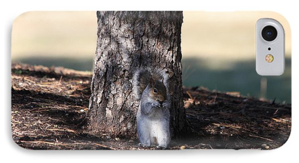 IPhone Case featuring the photograph Cute Squirrel by Vadim Levin