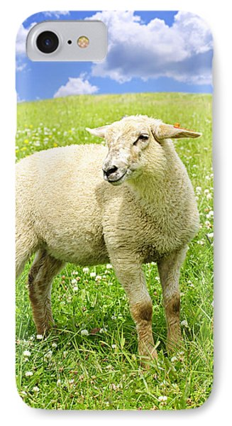 Cute Young Sheep Phone Case by Elena Elisseeva